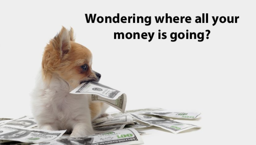 Wondering where all your money is going?